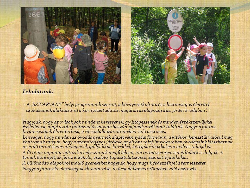 """Feladatunk: - A """"SZIVÁRVÁNY helyi programunk szerint, a környezetkultúra és a biztonságos életvitel."""