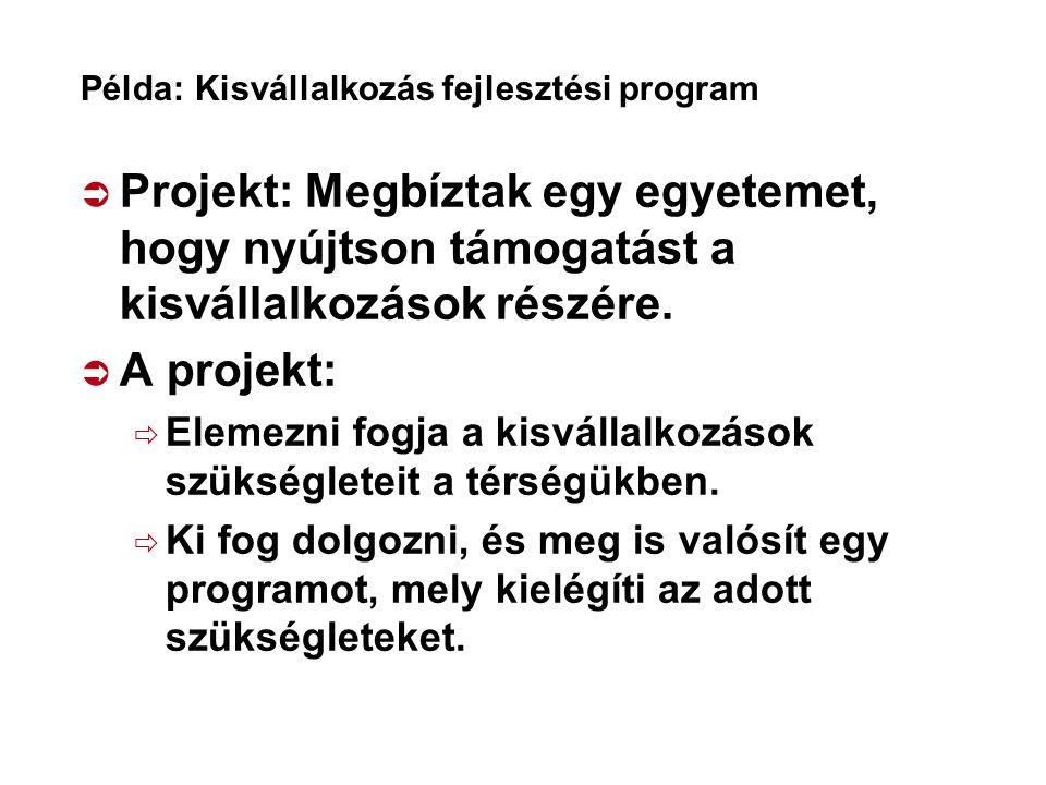 Példa: Kisvállalkozás fejlesztési program
