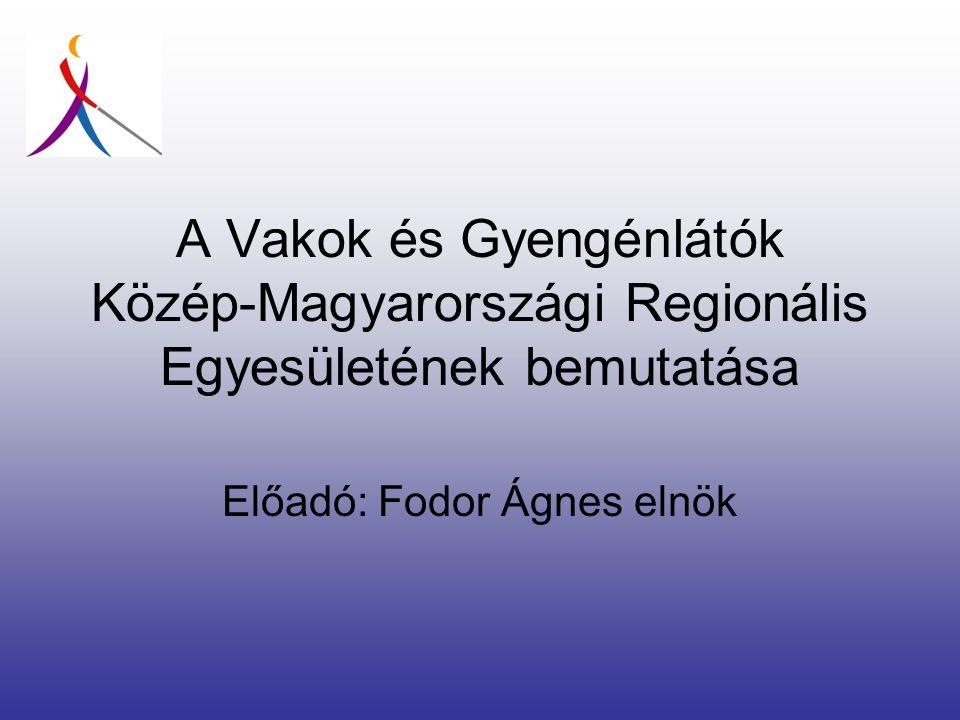 Előadó: Fodor Ágnes elnök