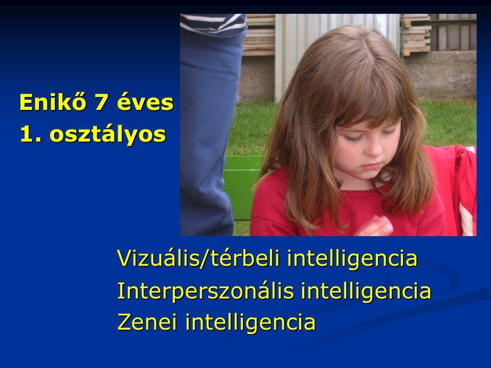 Enikő 7 éves 1. osztályos. Vizuális/térbeli intelligencia.