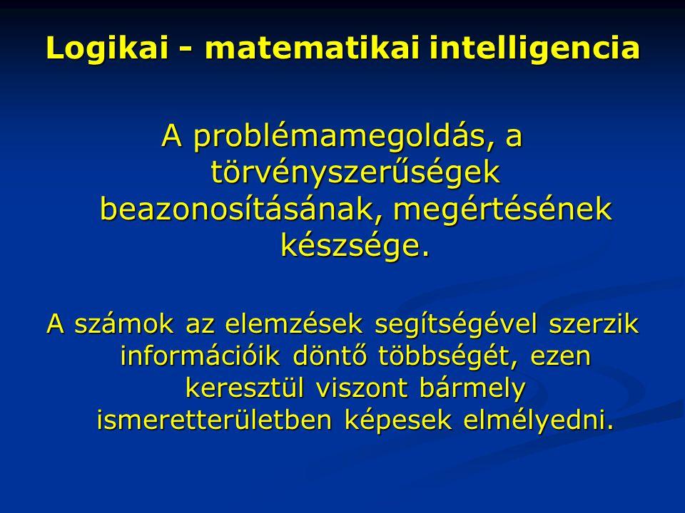 Logikai - matematikai intelligencia