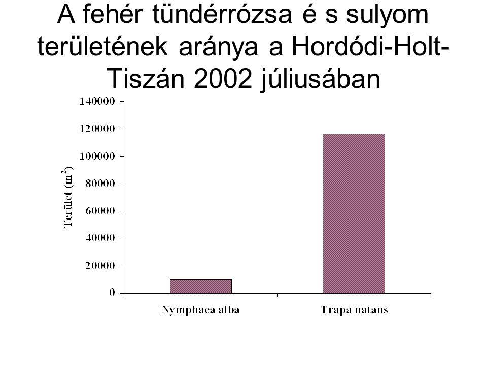 A fehér tündérrózsa é s sulyom területének aránya a Hordódi-Holt-Tiszán 2002 júliusában