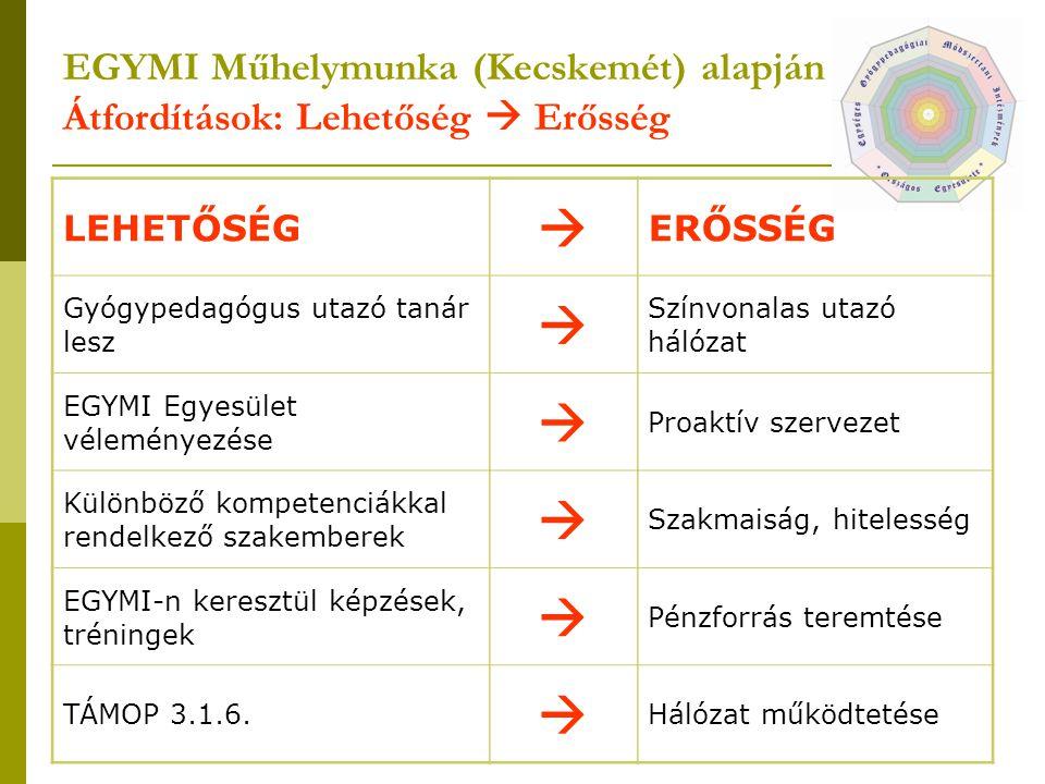 EGYMI Műhelymunka (Kecskemét) alapján Átfordítások: Lehetőség  Erősség