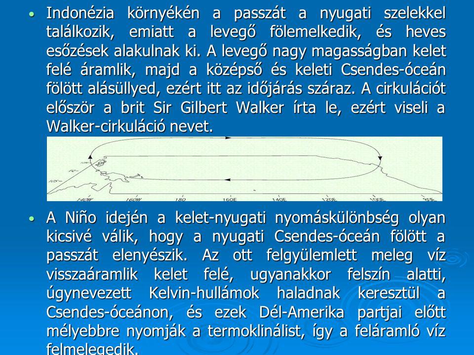 Indonézia környékén a passzát a nyugati szelekkel találkozik, emiatt a levegő fölemelkedik, és heves esőzések alakulnak ki. A levegő nagy magasságban kelet felé áramlik, majd a középső és keleti Csendes-óceán fölött alásüllyed, ezért itt az időjárás száraz. A cirkulációt először a brit Sir Gilbert Walker írta le, ezért viseli a Walker-cirkuláció nevet.