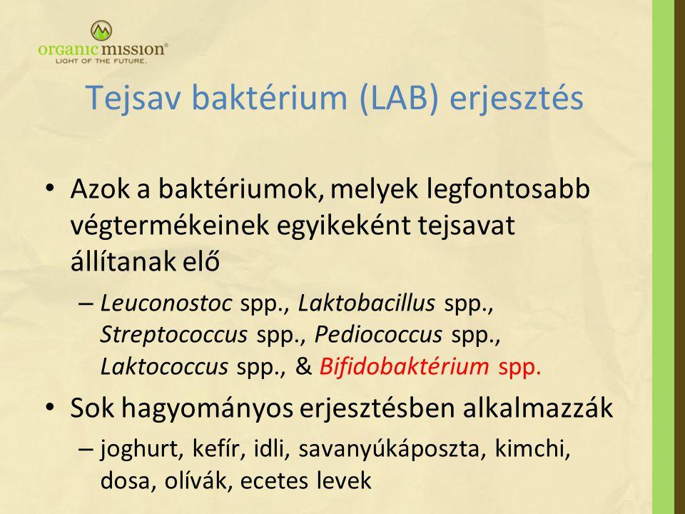 Tejsav baktérium (LAB) erjesztés