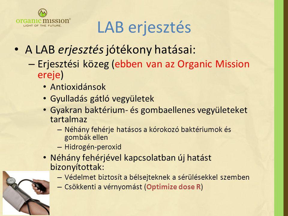 LAB erjesztés A LAB erjesztés jótékony hatásai: