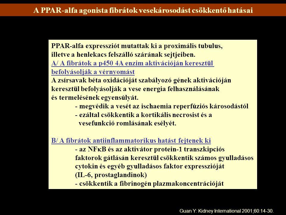 A PPAR-alfa agonista fibrátok vesekárosodást csökkentő hatásai