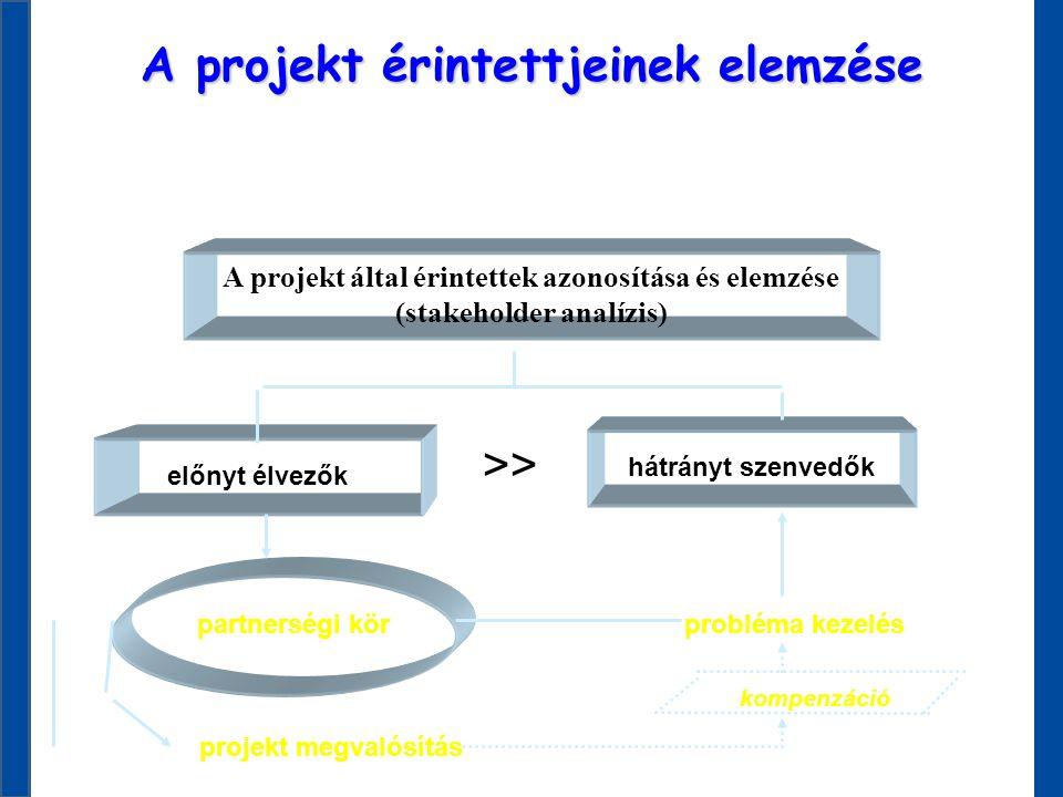 A projekt érintettjeinek elemzése