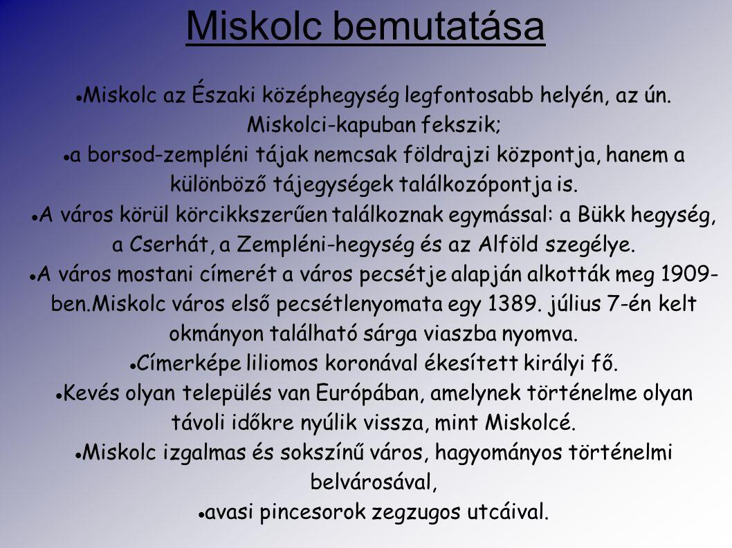 Miskolc bemutatása Miskolc az Északi középhegység legfontosabb helyén, az ún. Miskolci-kapuban fekszik;