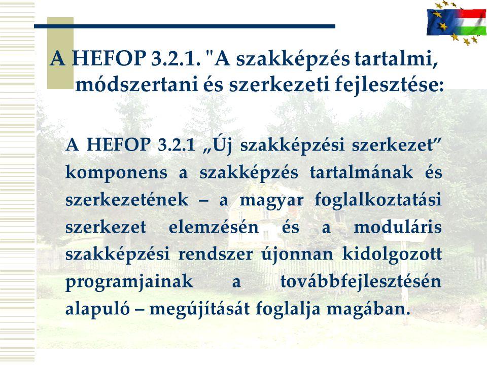 A HEFOP 3.2.1. A szakképzés tartalmi, módszertani és szerkezeti fejlesztése: