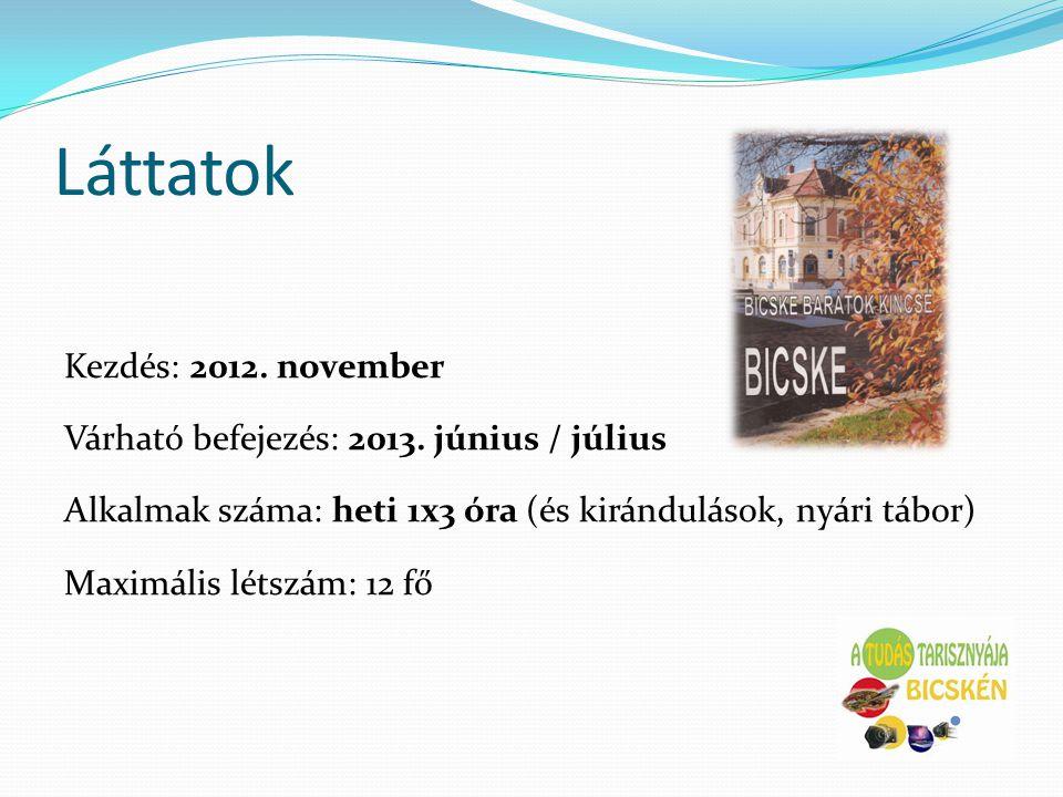 Láttatok Kezdés: 2012. november