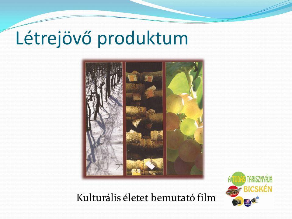 Kulturális életet bemutató film