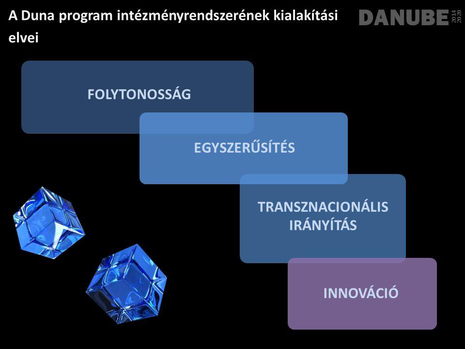 TRANSZNACIONÁLIS IRÁNYÍTÁS