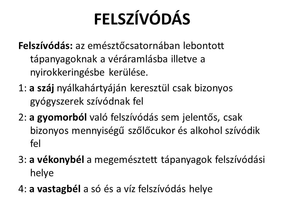 FELSZÍVÓDÁS