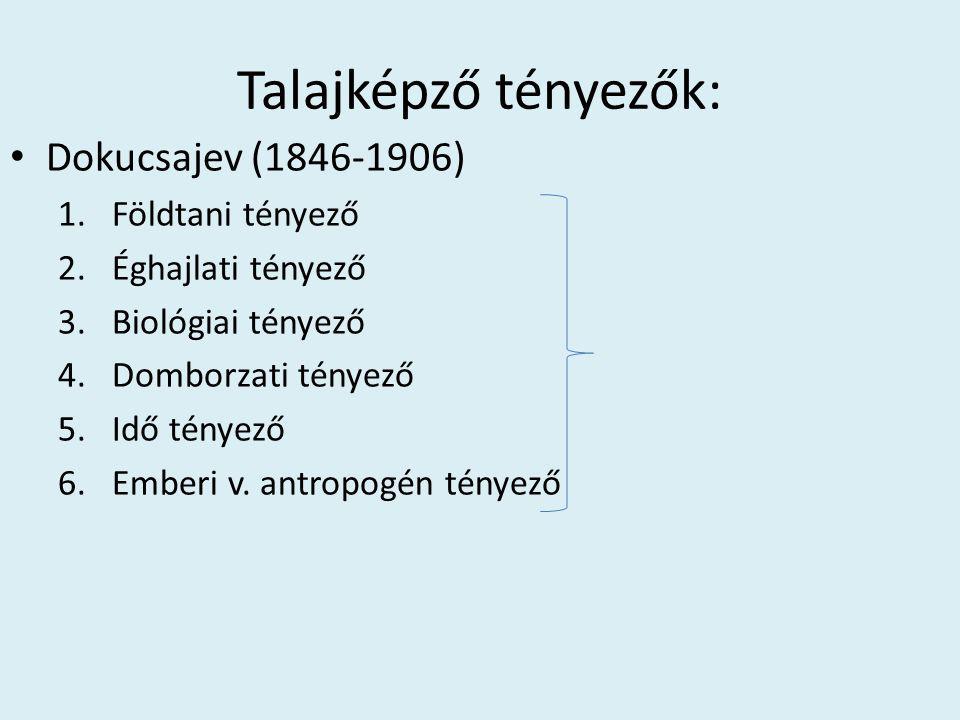 Talajképző tényezők: Dokucsajev (1846-1906) Földtani tényező