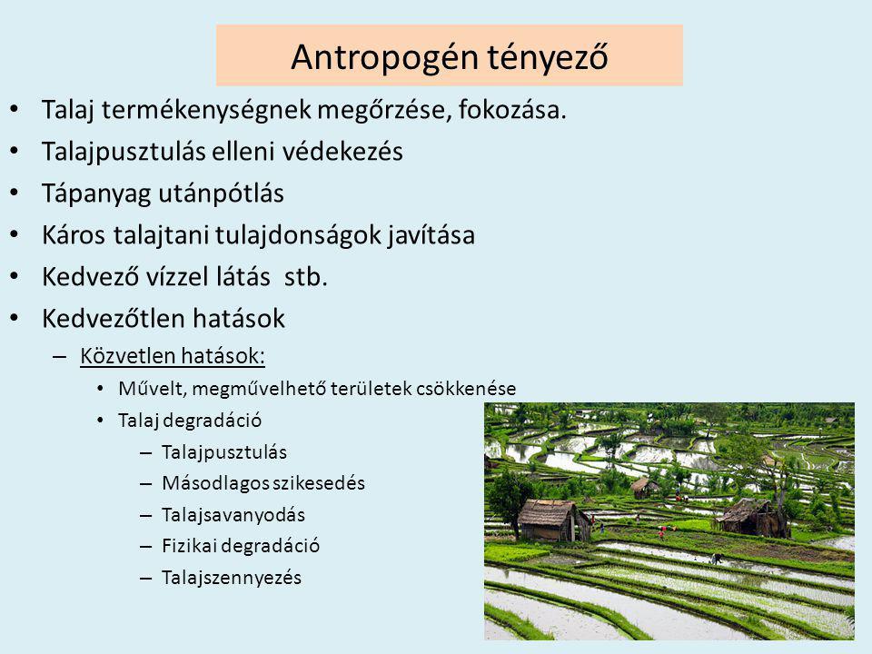 Antropogén tényező Talaj termékenységnek megőrzése, fokozása.