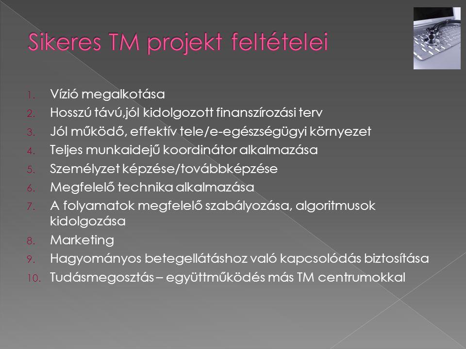 Sikeres TM projekt feltételei