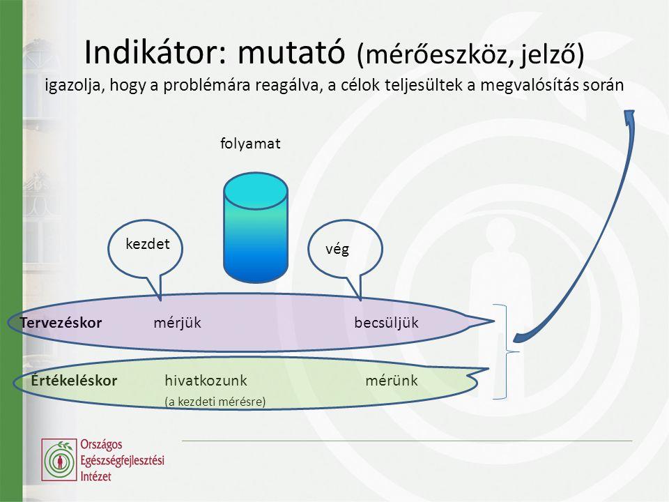 Indikátor: mutató (mérőeszköz, jelző) igazolja, hogy a problémára reagálva, a célok teljesültek a megvalósítás során