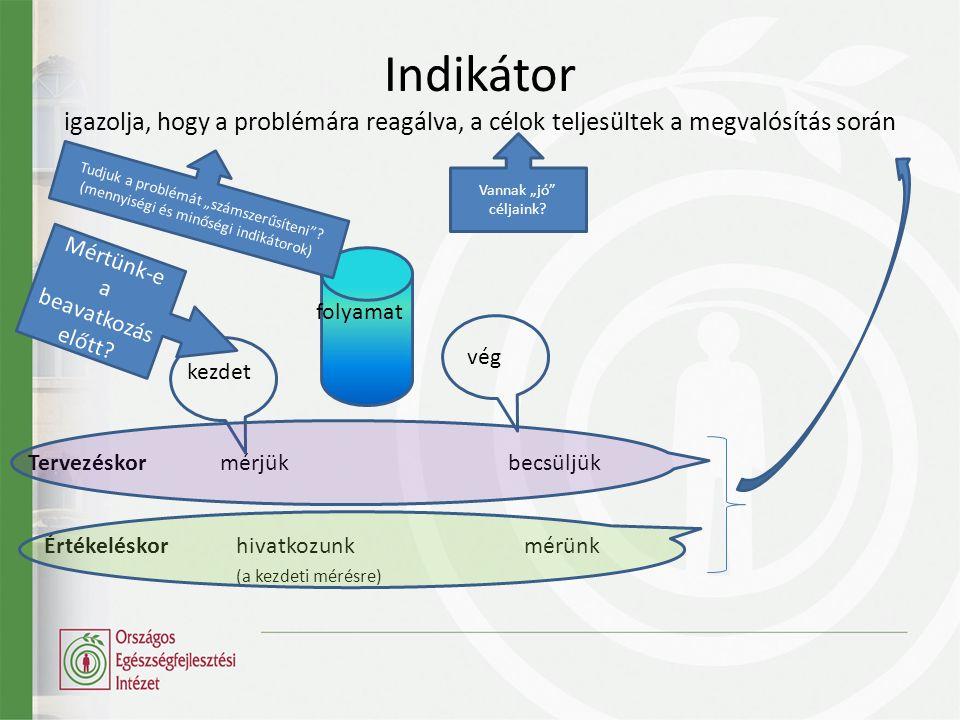 Indikátor igazolja, hogy a problémára reagálva, a célok teljesültek a megvalósítás során