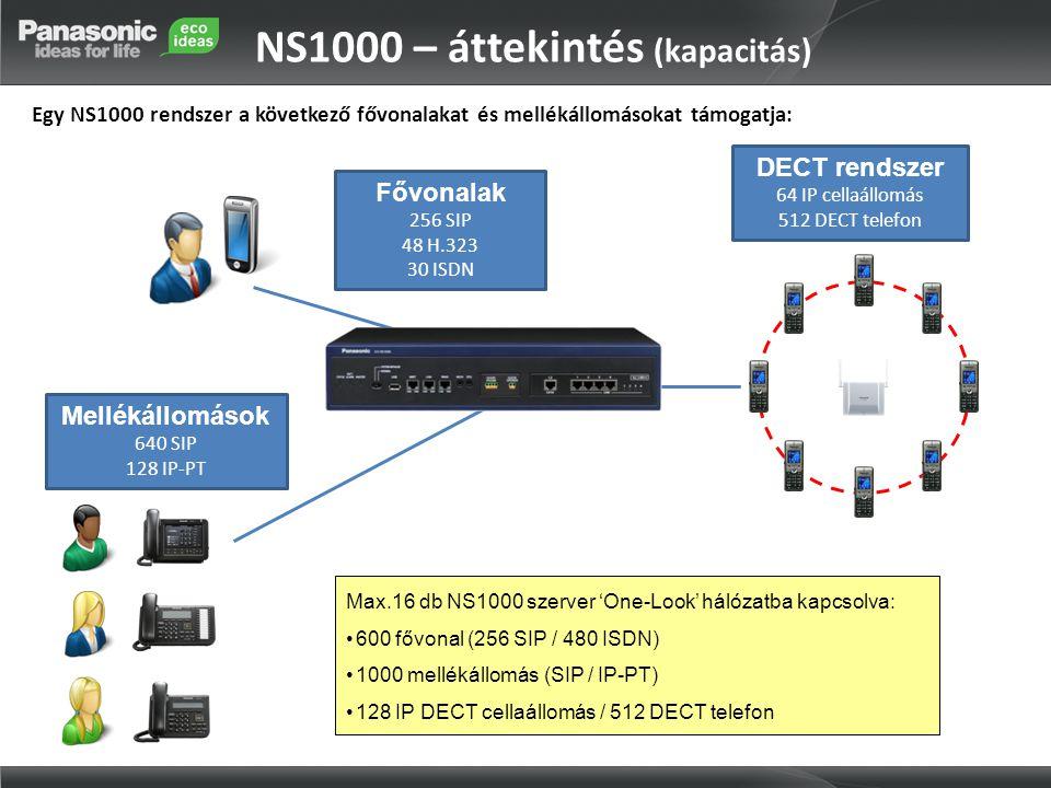 NS1000 – áttekintés (kapacitás)