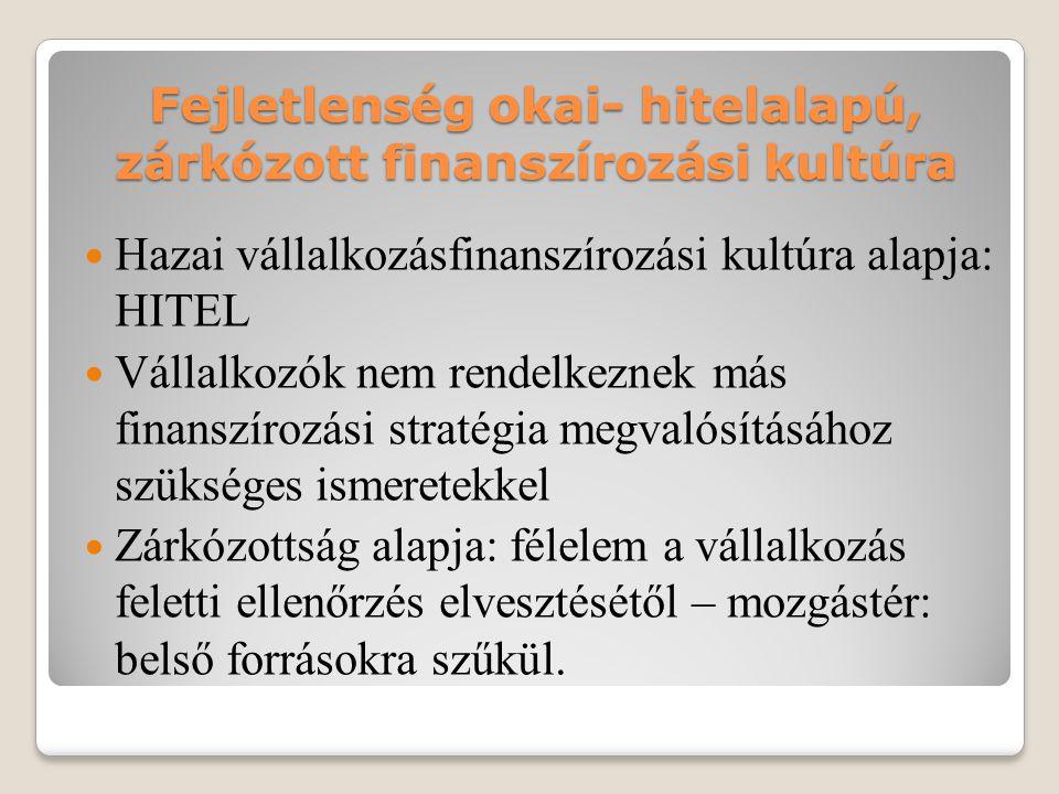 Fejletlenség okai- hitelalapú, zárkózott finanszírozási kultúra