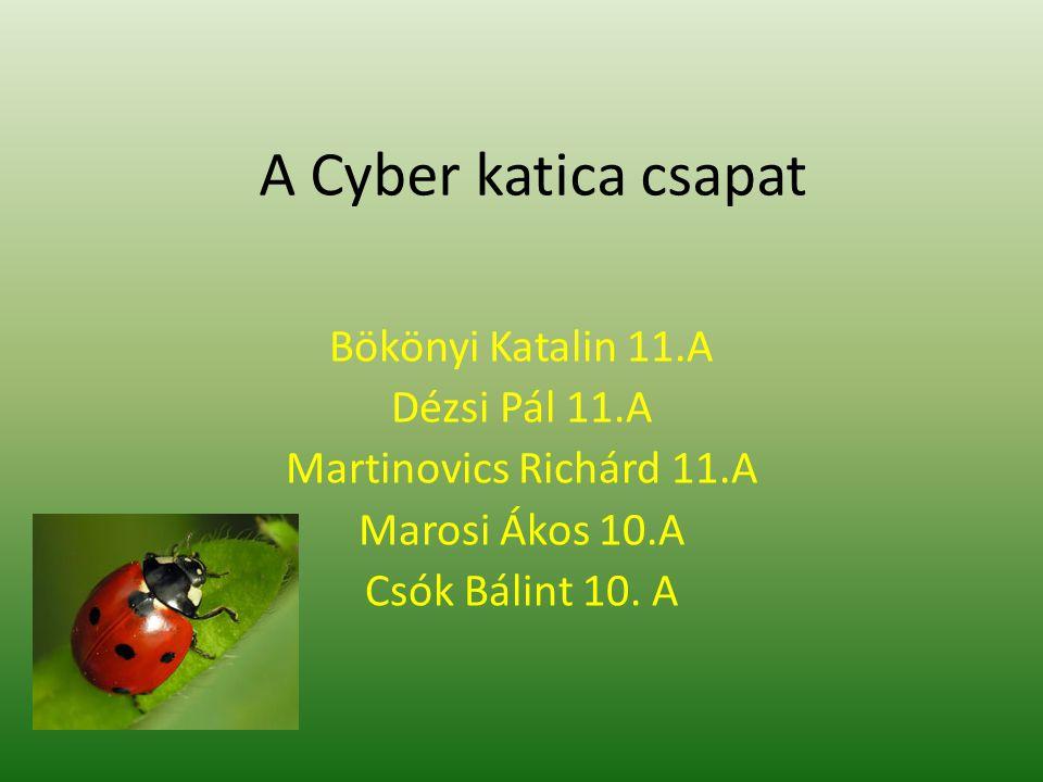 A Cyber katica csapat Bökönyi Katalin 11.A Dézsi Pál 11.A