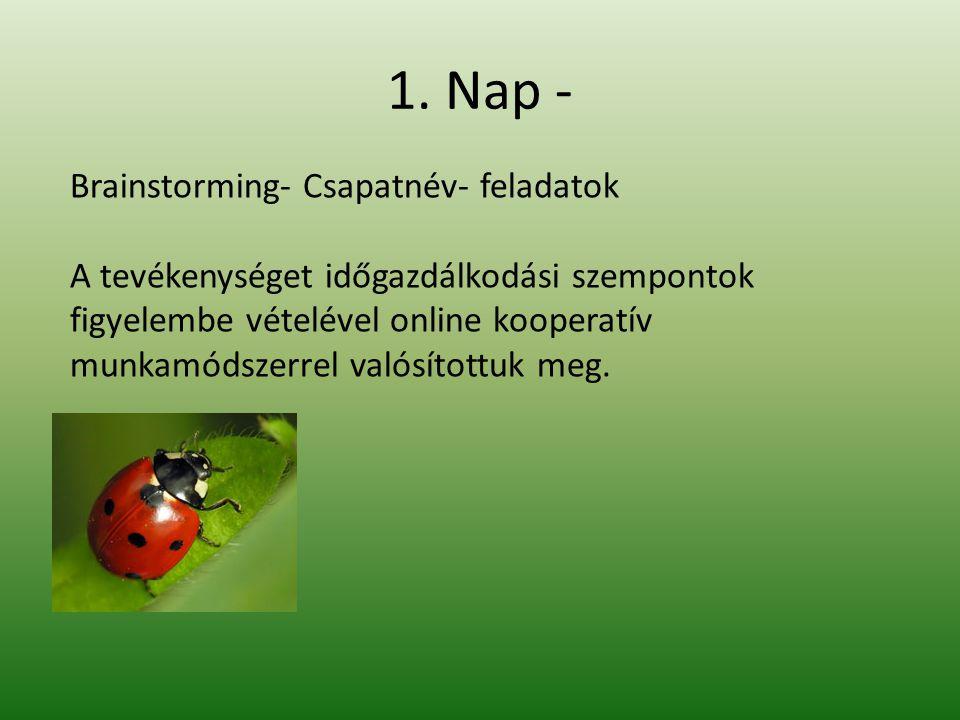 1. Nap - Brainstorming- Csapatnév- feladatok