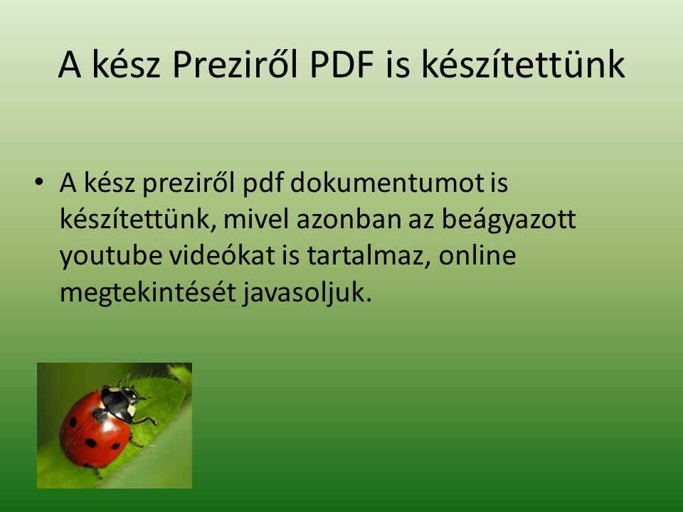 A kész Preziről PDF is készítettünk