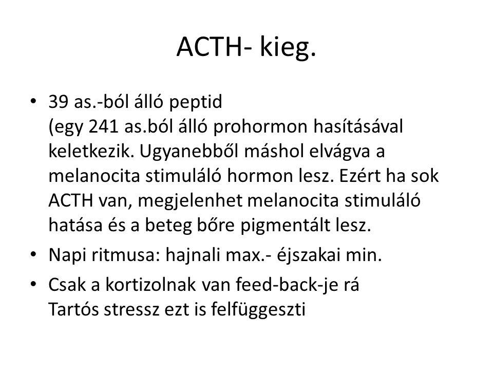 ACTH- kieg.
