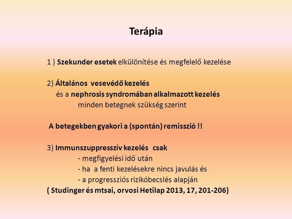 Terápia 1 ) Szekunder esetek elkülönítése és megfelelő kezelése