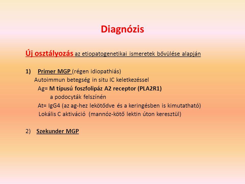 Diagnózis Új osztályozás az etiopatogenetikai ismeretek bővülése alapján. Primer MGP (régen idiopathiás)