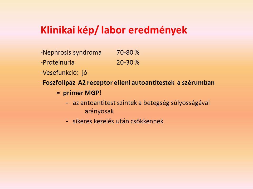 Klinikai kép/ labor eredmények