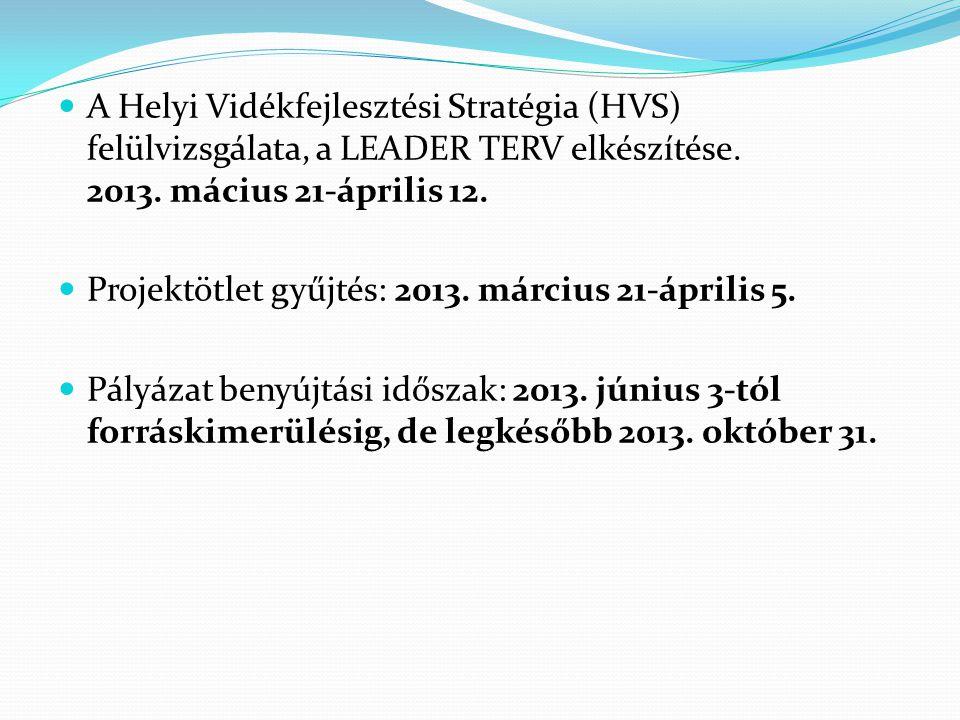 A Helyi Vidékfejlesztési Stratégia (HVS) felülvizsgálata, a LEADER TERV elkészítése. 2013. mácius 21-április 12.