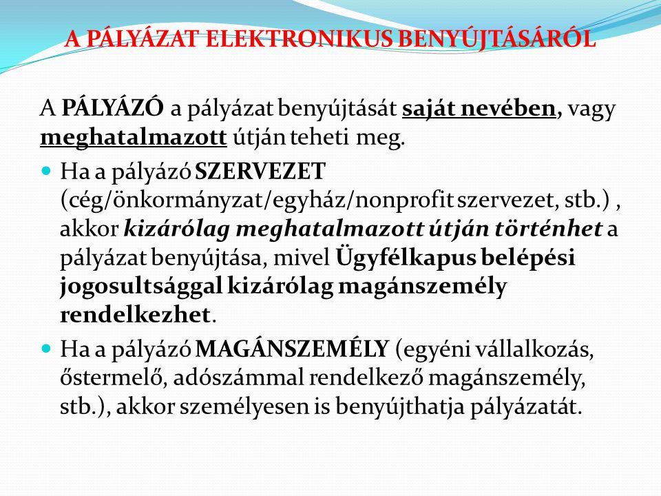 A PÁLYÁZAT ELEKTRONIKUS BENYÚJTÁSÁRÓL