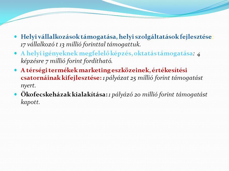 Helyi vállalkozások támogatása, helyi szolgáltatások fejlesztése: 17 vállalkozó t 13 millió forinttal támogattuk.