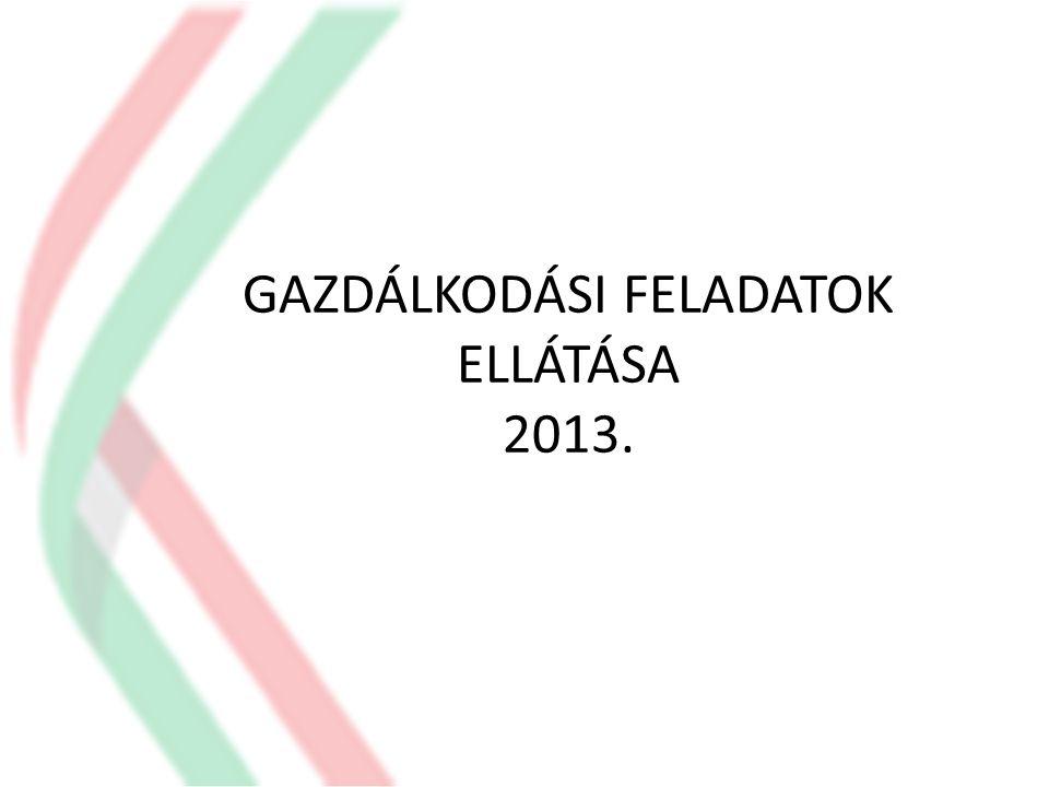GAZDÁLKODÁSI FELADATOK ELLÁTÁSA 2013.