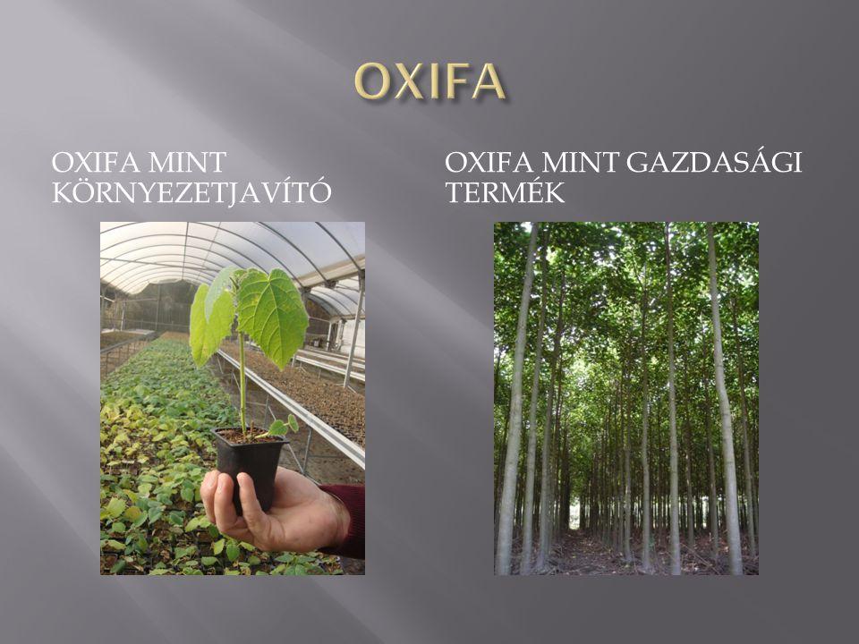 OXIFA Oxifa mint környezetjavító Oxifa mint gazdasági termék