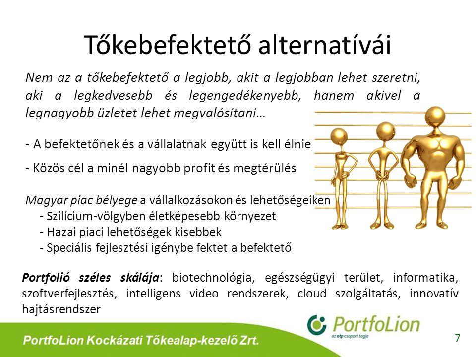 Tőkebefektető alternatívái