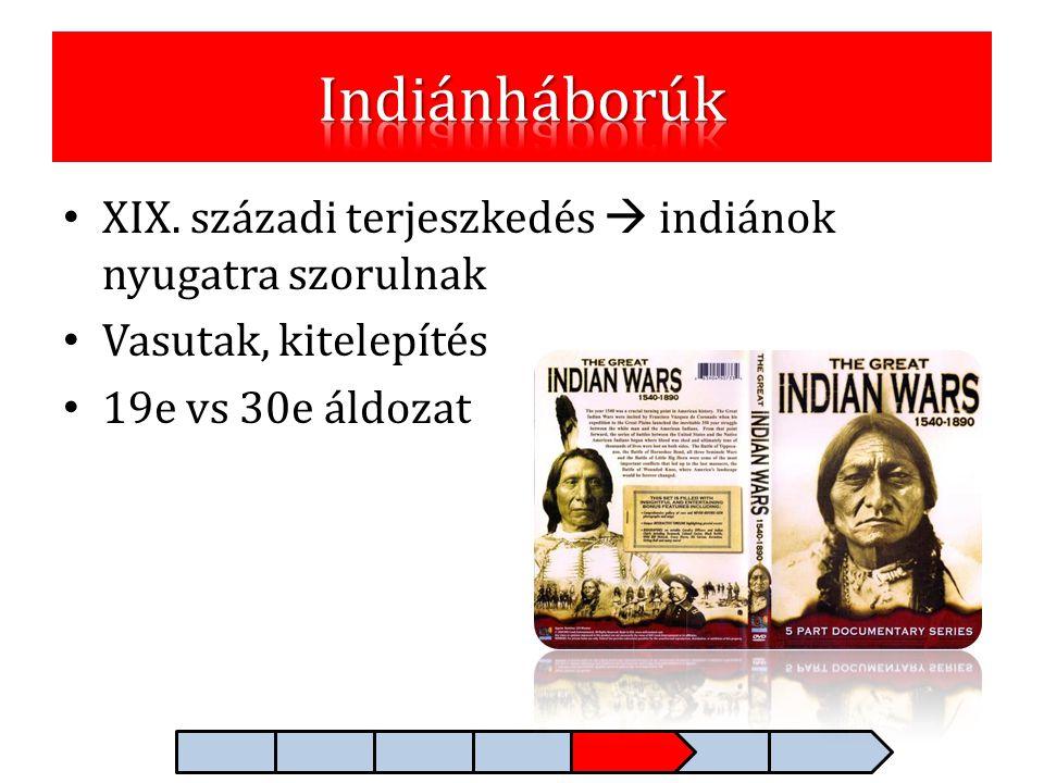 Indiánháborúk XIX. századi terjeszkedés  indiánok nyugatra szorulnak