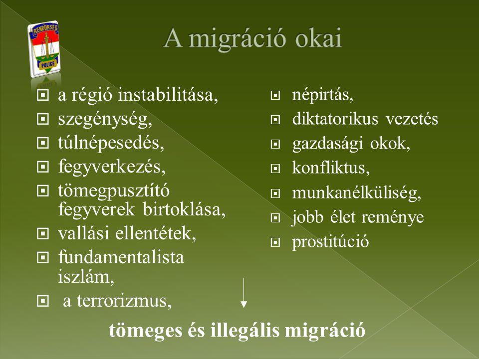 A migráció okai tömeges és illegális migráció a régió instabilitása,