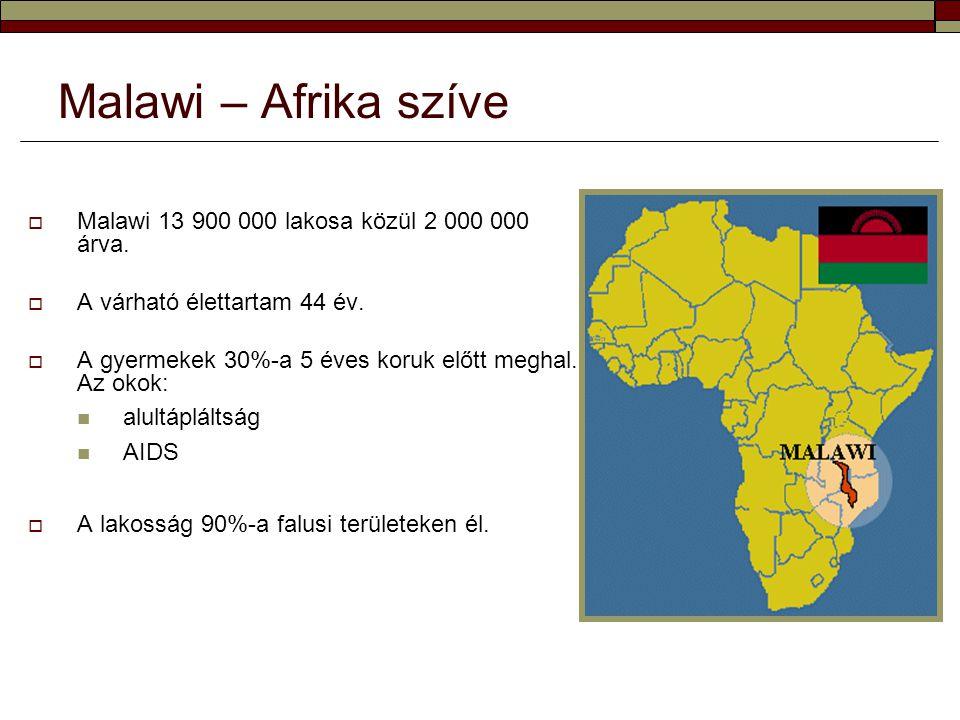 Malawi – Afrika szíve Malawi 13 900 000 lakosa közül 2 000 000 árva.