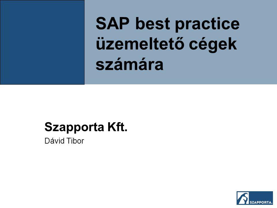 SAP best practice üzemeltető cégek számára