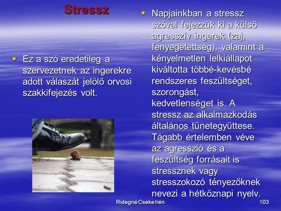 Napjainkban a stressz szóval fejezzük ki a külső agresszív ingerek (zaj, fenyegetettség), valamint a kényelmetlen lelkiállapot kiváltotta többé-kevésbé rendszeres feszültséget, szorongást, kedvetlenséget is. A stressz az alkalmazkodás általános tünetegyüttese. Tágabb értelemben véve az agresszió és a feszültség forrásait is stressznek vagy stresszokozó tényezőknek nevezi a hétköznapi nyelv.