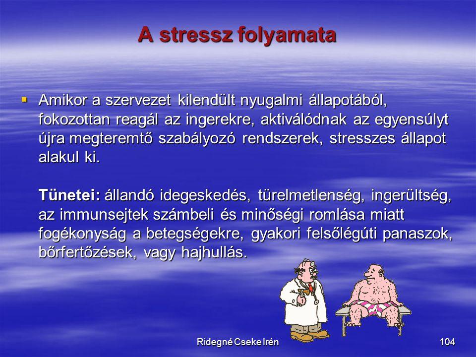 A stressz folyamata
