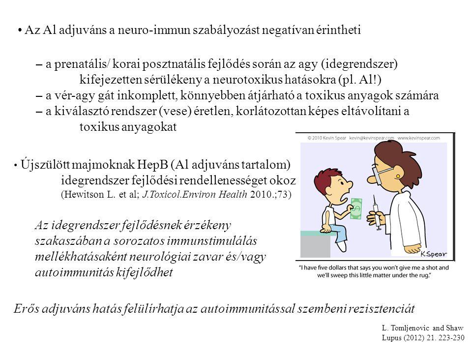 Az Al adjuváns a neuro-immun szabályozást negatívan érintheti