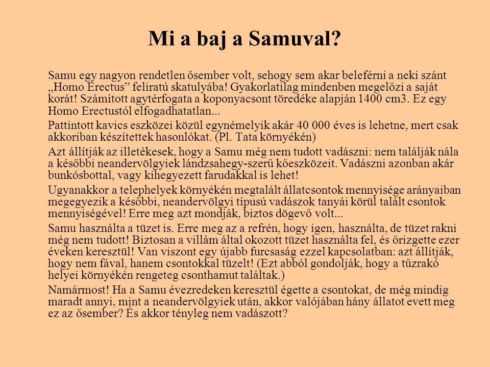 Mi a baj a Samuval