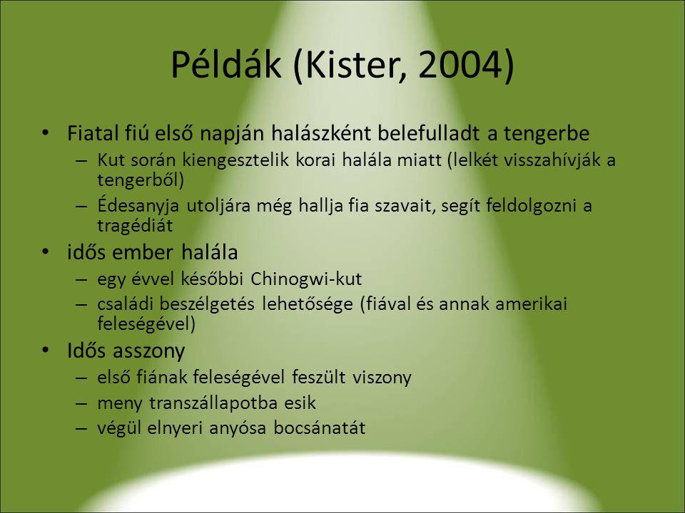 Példák (Kister, 2004) Fiatal fiú első napján halászként belefulladt a tengerbe.