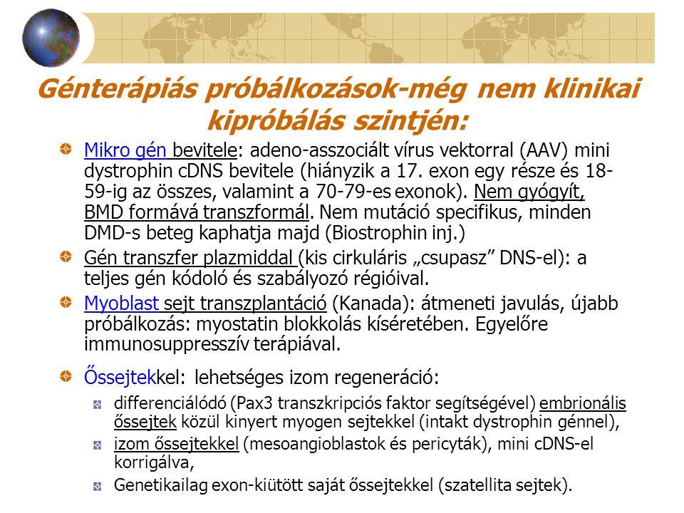 Génterápiás próbálkozások-még nem klinikai kipróbálás szintjén: