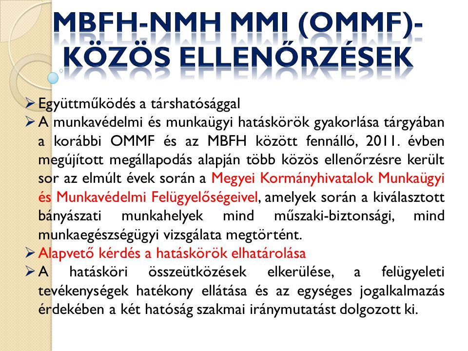 MBFH-NMH MMI (OMMF)- közös ellenőrzések