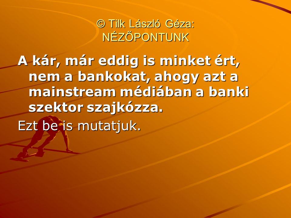 © Tilk László Géza: NÉZŐPONTUNK